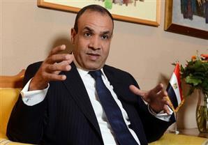 سفير مصر بألمانيا : نسبة التصويت فى المرحلة الثانية زادت 130% عن الأولى