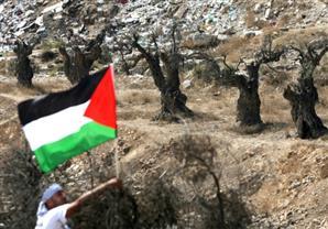 إسرائيل تعتزم إقامة