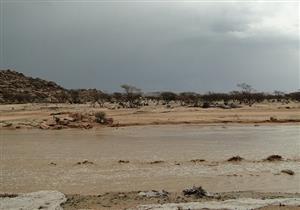 """""""الأرصاد"""": أمطار غزيرة لمدة 72 ساعة بهذه المناطق- فيديو"""