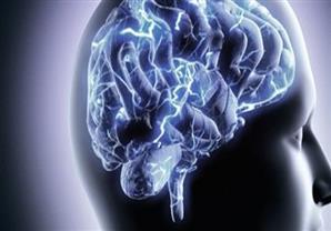 دراسة أمريكية: المخ يمكن أن ينتج السكر الخاص به