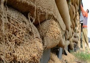 مصر تشتري 60 ألف طن من القمح الروماني