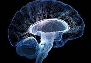 ماذا يحدث في الدماغ لحظة الموت؟