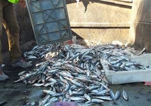 إحباط ترويج 16 طن أسماك فاسدة على المواطنين في البحيرة