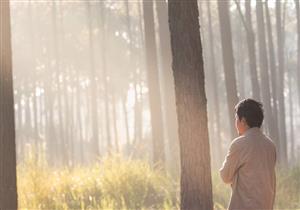 لماذا أرسل الله سبحانه وتعالى الأنبياء وما هو السبب من إرسالهم؟