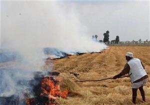 """البيئة: """"حرائق قش الأرز موجودة.. ومش هنحط عسكري على كل فدان لمنعها"""""""