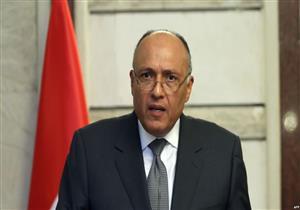 سامح شكري يبحث مع مسئول إيطالي تطورات الوضع في ليبيا وسوريا