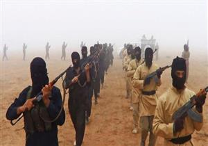 مسلحو تنظيم الدولة الإسلامية البريطانيون يجب قتلهم