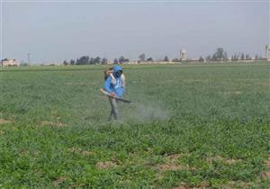 الزراعة: تقارير دورية لمراجعة مستوى متبقيات المبيدات المستخدمة محليًا