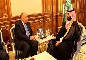 شكري يلتقي ولي العهد السعودي وينقل رسالة من السيسي إلى سلمان