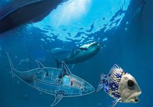 روبوت يقلد الأسماك ويقود تحركات مجموعاتها