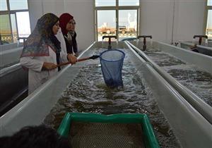 """""""بركة غليون"""".. من مركز للهجرة غير الشرعية إلى أول مدينة للاستزراع السمكي بالشرق الأوسط"""