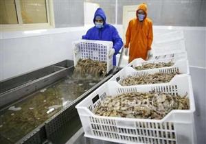 """ما هو مشروع """"بركة غليون"""" للاستزراع السمكي الذي افتتحه السيسي اليوم؟"""