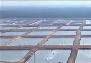 """السيسي: رفع كفاءة بحيرة المنزلة يحتاج 50 مليار جنيه.. """"نجيبهم منين"""""""