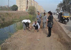 """خطة لنشر زراعة الشجر المثمر في مراكز """"المنيا"""" التسع - صور"""