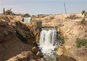 """""""البيئة"""": الانتهاء من تطوير محمية وادي الريان بعد 6 أشهر"""