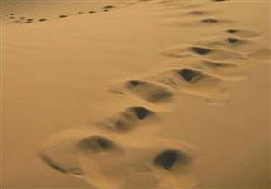 من الصحابي الذي رافق النبي في رحلته إلى الطائف؟