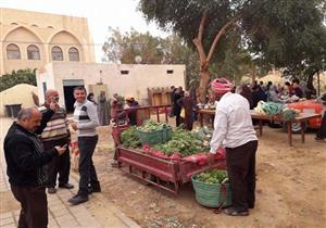 خضروات وفاكهة الوادي الجديد تُرهق إمكانات المواطن (صور)