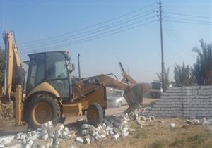 مصدر بالزراعة: 800 شركة مُتهمة بالاستيلاء على 2.5 مليون فدان من أراضي الدولة