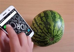 """بالفيديو- ما لا تعرفه عن """"تطبيق البطيخ"""".. وهذه طريقة استخدامه"""
