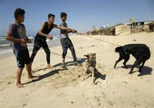 نتانياهو: إسرائيل غير معنية بالتصعيد في قطاع غزة