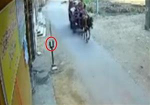 كاميرات المراقبة ترصد سرقة صندوق تبرعات من أمام دار للأيتام بطنطا