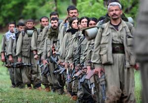 تركيا تعلن تحييد 6 من مسلحي حزب العمال الكردستاني جنوب شرقي البلاد