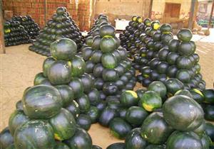 4 طرق غير تقليدية للتعرف على جودة البطيخ