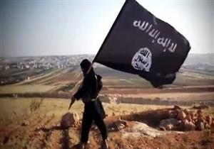 قوة مشتركة من الجيش والعشائر العراقية تحرر مناطق قرب الحدود مع السعودية