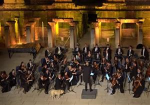 كلب ضال يخطف الأضواء من عازفي فرقة موسيقية تركية - فيديو