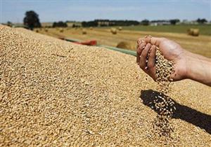 الزراعة تصدر قواعد إرشادية لقبول شحنات القمح في الموانئ