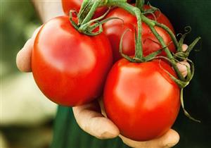 دراسة: الطماطم تحافظ على ليونة الجلد