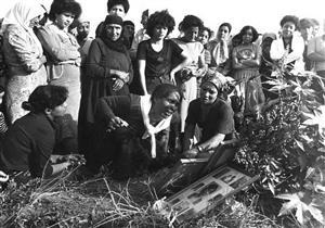 حين فقدت عائلة الخطيب 11 شخصا.. مجزرة صبرا وشاتيلا في صورة