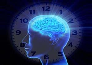 أستاذ طب نفسي: الخلايا العصبية مسؤولة عن عمل الساعة البيولوجية