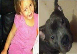 كلب ينهش طفلة حتى الموت في منزلها