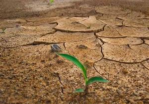 """شائعات في حياتنا: """"عدم نزول المطر غضب من عند الله"""" فهل هذا صحيح؟"""