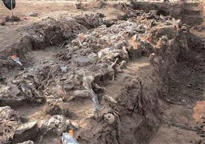 ليبيا: العثور على رفات 75 شخصًا في مقبرة جماعية بمدينة سرت