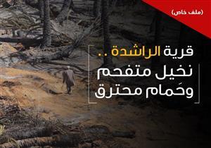 في قرية الراشدة.. نخيل متفحم وحَمام محترق (ملف خاص)
