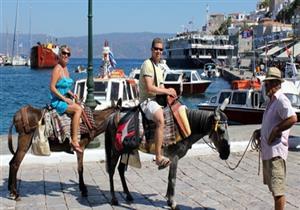 حرصًا على صحة الحمير.. دولة أوروبية تمنع بعض السياح من ركوبها