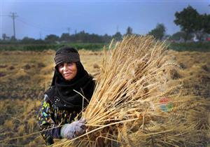 """في يومها العالمي.. المرأة الريفية """"ملح الأرض"""" (صور)"""