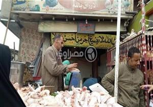 في جولة لمصراوي.. أسعار الدواجن تعاود الارتفاع والكيلو يصعد 3 جنيهات