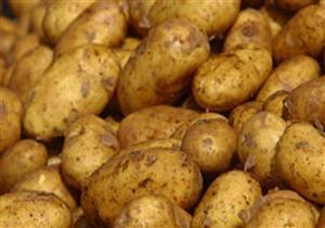 """""""زراعة النواب"""": أسعار البطاطس والطماطم زادت بشكل غير مبرر"""