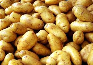 بعد ارتفاع أسعارها.. الطريقة الأمثل لحفظ البطاطس لأطول مدة