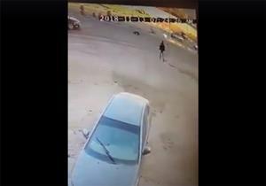 فيديو| حاول الهرب من الكلاب فدهسته سيارة في المعادي