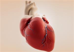نصائح لتجنب التأثيرات السلبية للشتاء على صحة القلب