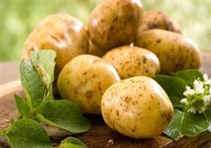 البطاطس غذاء متكامل يمكن الاعتماد عليها طيلة العمر
