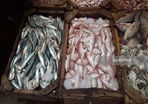 البلطي يصل إلى 26 جنيها.. أسعار السمك في سوق العبور اليوم