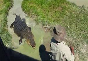 أسترالي يقتل تمساحاً عمره 100 سنة.. وهذا كان العقاب