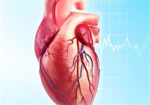 علماء يكتشفون طريقة لاستعادة خلايا عضلة القلب التالفة