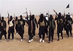 مقتل جندي عراقي وإصابة 5 في هجوم لداعش في صحراء الرطبة