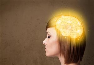 معلومات ستذهلك عن «المخ»